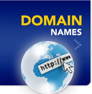 web domain registration cost